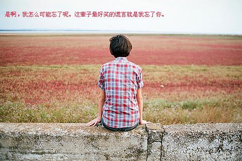 掩饰的爱_还是会寂寞_孤单寂寞的文字贴图空间素材_腾牛个性网
