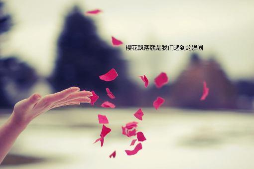 情人节伤感QQ空间女生图片 一个人仰望天空