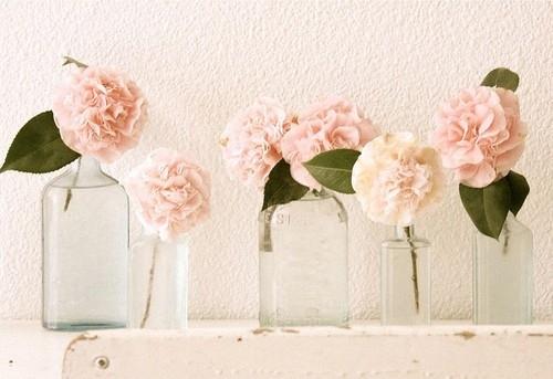 一朵花图片唯美图片-花的物语唯美qq空间图片设计 花开花落我一样在