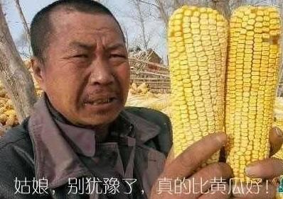 11月a大全qq大全表情阴阳师魂十表情图图片