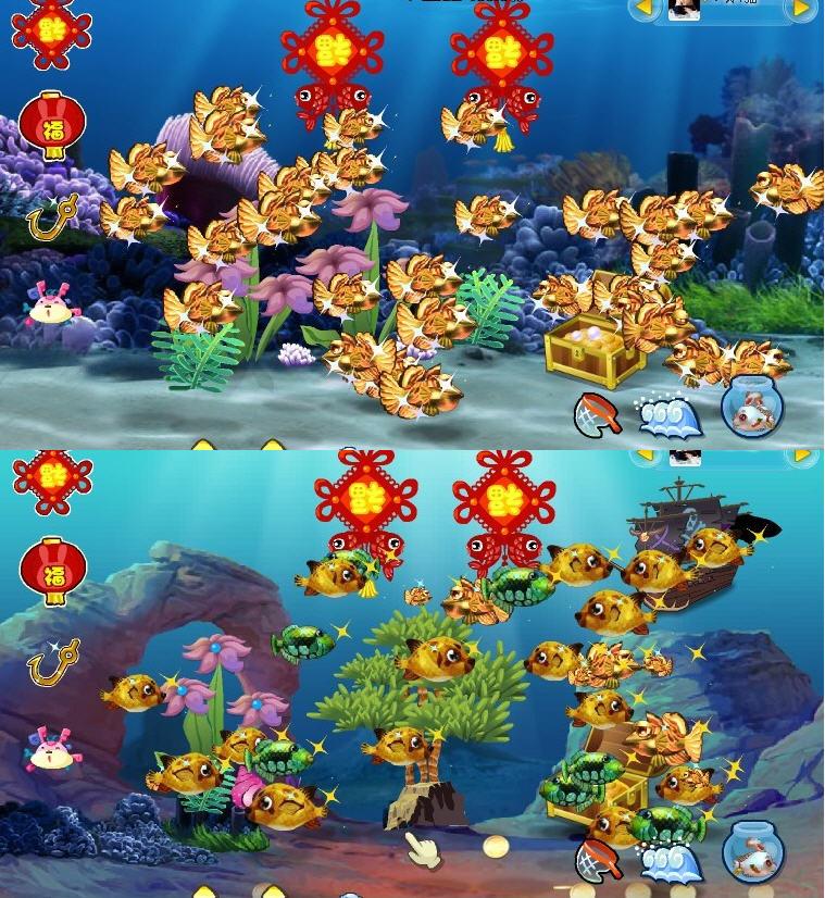 梦幻海底35级玩家晒海底装饰和真鱼