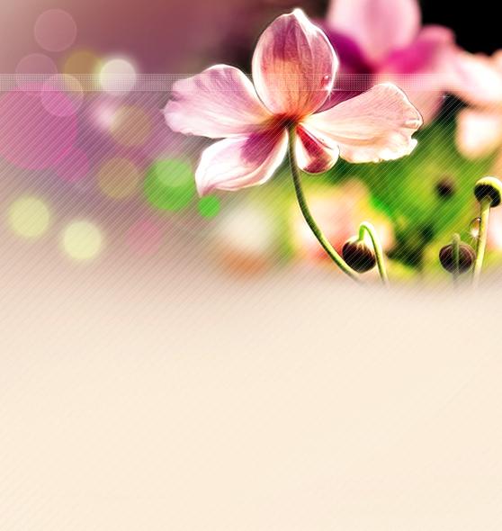 春天人物唯美意境壁纸