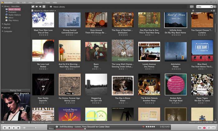 音乐收藏管理工具(MusicBee)下载2.2 免费版