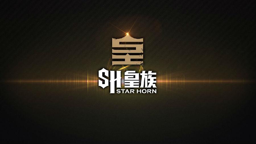 国绅壁纸logo