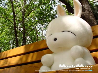 壁纸 流氓兔/可爱流氓兔精美QQ空间素材